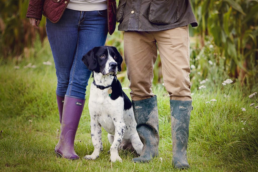 lifestyle pet and dog photography outdoors and at home in Milton Ketnes, Buckingham, Towcester, Leighton Buzzard and surrounding areas