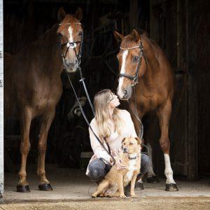 Equine portrait photography Milton Keynes, Buckingham, Towcester