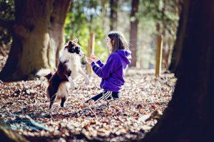Natural outdoor dog photography Milton Keynes Buckinghamshire