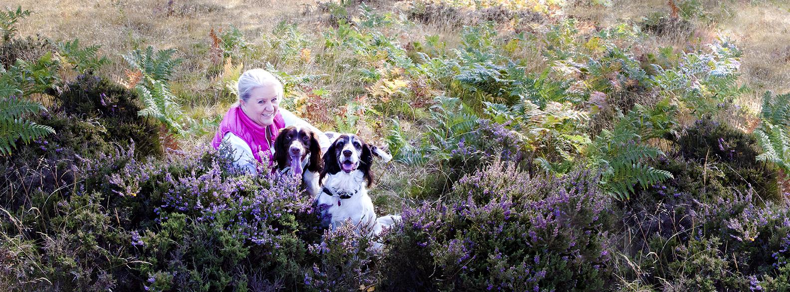 Milton-keynes dogs on the heath