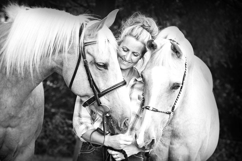Northamptonshire horse portrait