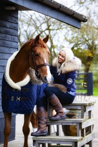 Equine horse portrait photography in Buckinghamshire