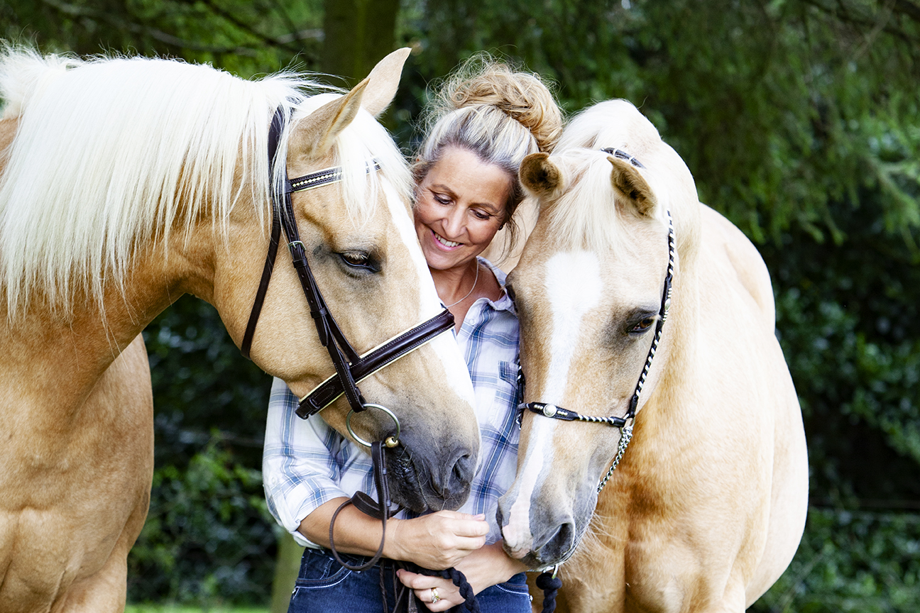 Equine horse portrait photography in Northamptonshire